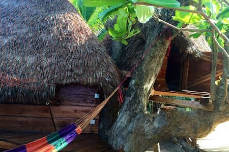 Tree house. Be a bird! - Corn Island - Treehouse - Get $25 credit with Airbnb if you sign up with this link http://www.airbnb.com/c/groberts22