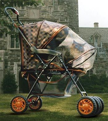 Kitteh-stroller (Royale).   Oh yes...Jezebel and my Little Man Tate would love this.