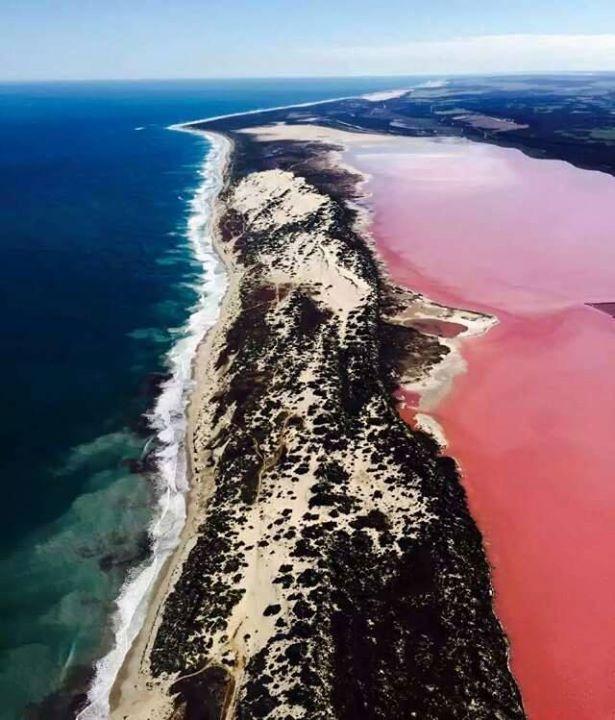 Pink Lake, Port Gregory
