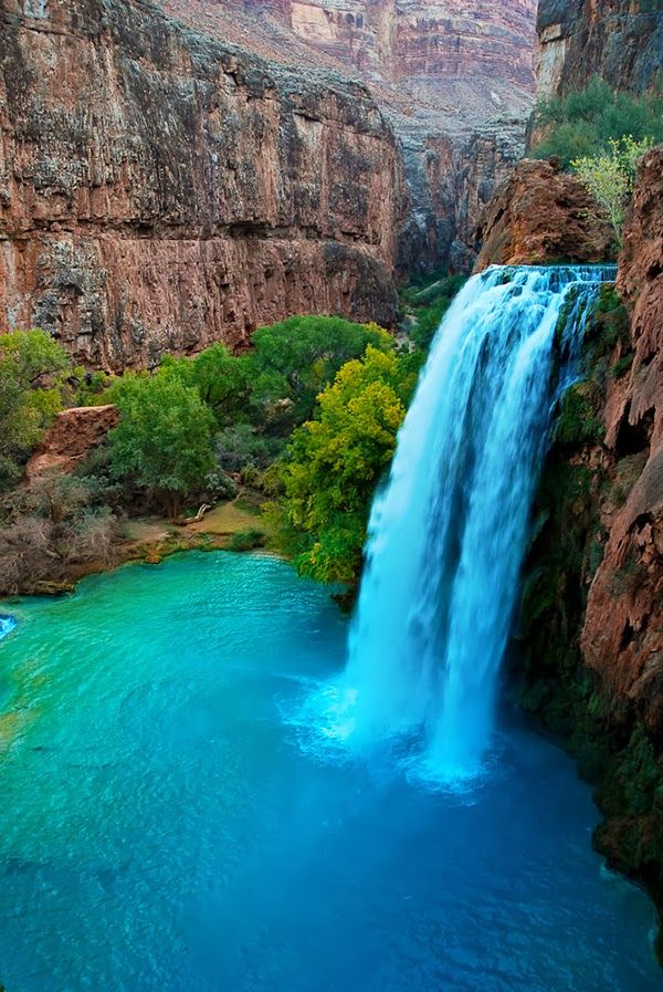 Havasu Falls Havasu Creek, Arizona United States ; bucket list; travel; need to see; grand canyon