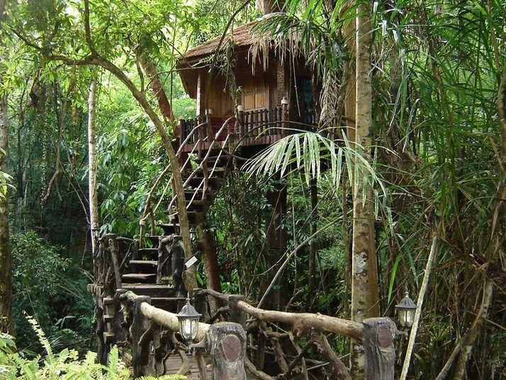 khao sok national park - Google Search