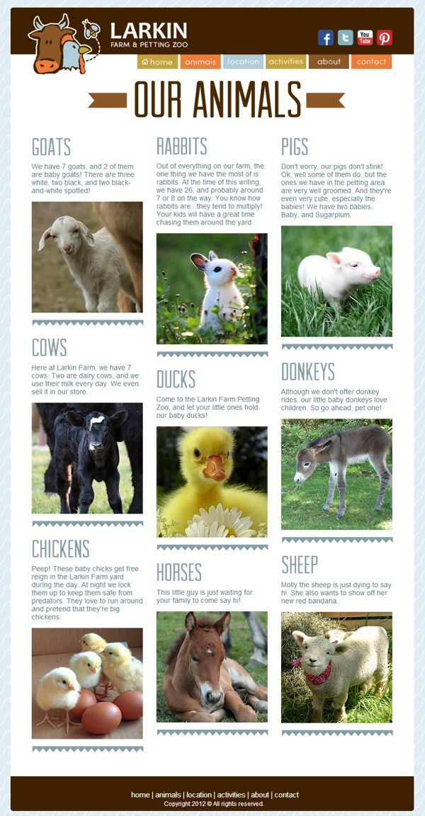 Larkin Farm & Petting Zoo Website by Anne Sanders, via Behance Website Design & Development #asandersdesign