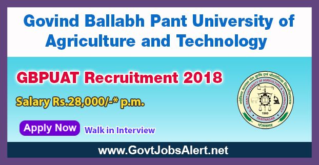 GBPUAT Recruitment 2018 - Walk in Interview for Senior Research Fellowship (SRF) Post, Salary Rs.28,000/- : Apply Now !!!  The Govind Ballabh Pant University of Agriculture and Technology – GBPUAT Recruitment 2018 has released an official employment notification inviting interested and eligible candidates to apply for the positions of Senior Research Fellowship (SRF) under the Department of Biotechnology, Ministry of Science & Technology, Govt.   #2018 #featured #GBPUAT