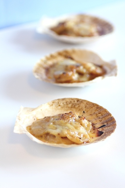 Julia Child's Coquille St. Jaques a la Provencale. Please click on the photo in Yumgoggle to get to this delicious recipe. Enjoy!