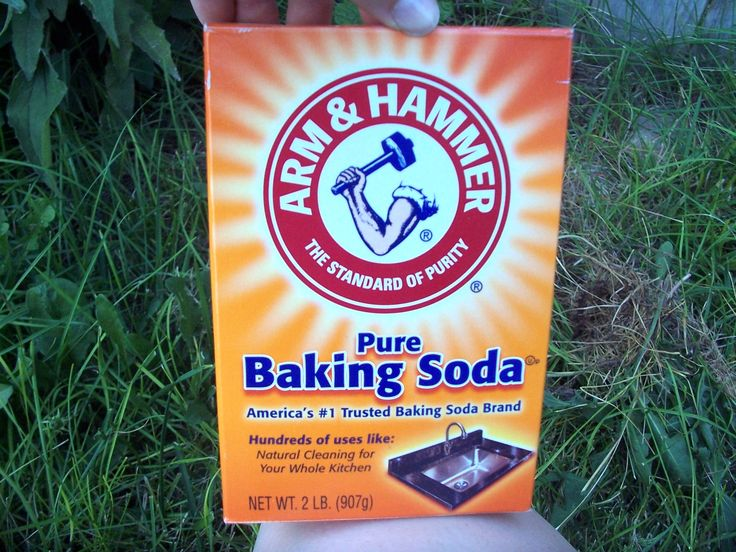 Source While searching Pinterest, I often see this pin. It claims that you can use baking soda as a weed killer. I am a huge fan of baking soda for a couple reasons. 1: It's cheap 2: It&#8217…