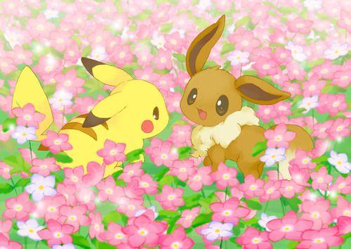 Pikachu x Eevee