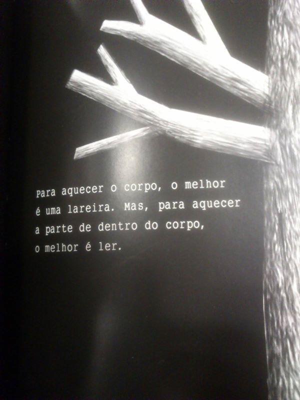 Afonso Cruz, O livro do ano