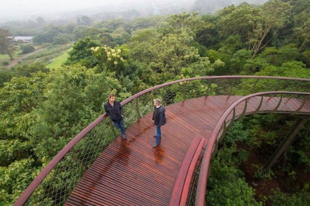 This treetop canopy walkway was inspired by a snake's skeleton