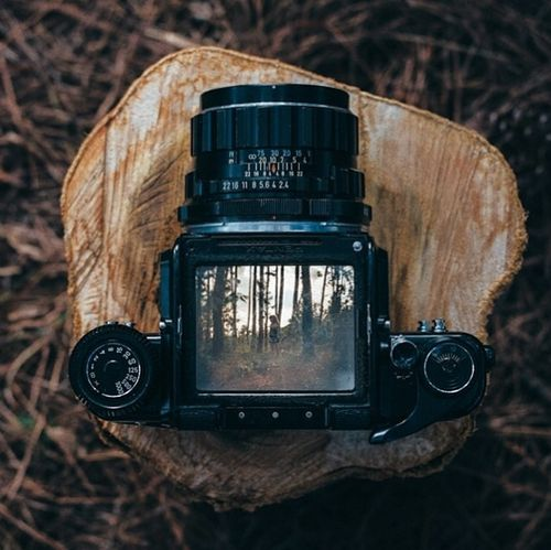 Μe and my camera and the woods