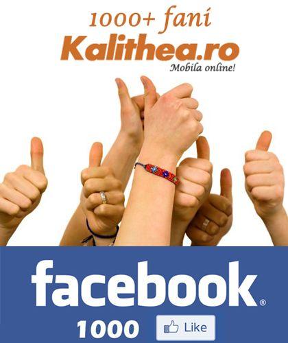 Pagina noastra de facebook a atins cifra rotunda de 1000 de like-uri. Mobila Kalithea.ro