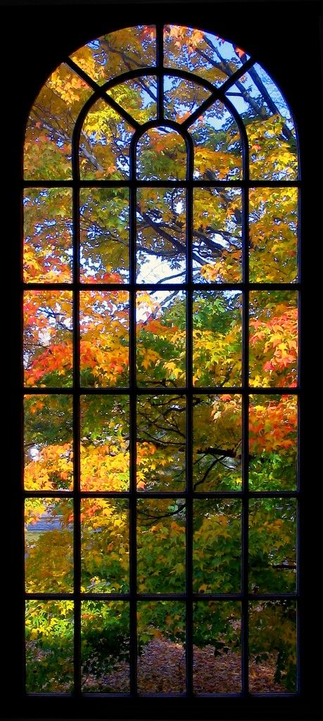 Natural stained glass -- colours. Autumn Arch, Cheshire, Connecticut photo via karin