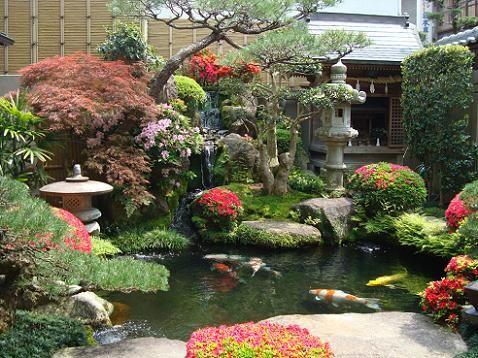 plantas japonesas