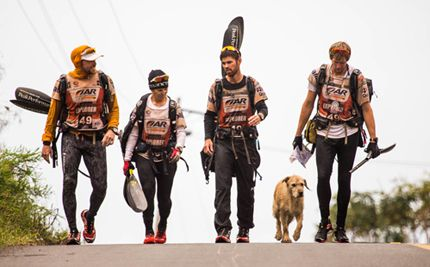 Stray Dog Befriends Trekkers and Follows Them for 430 Miles