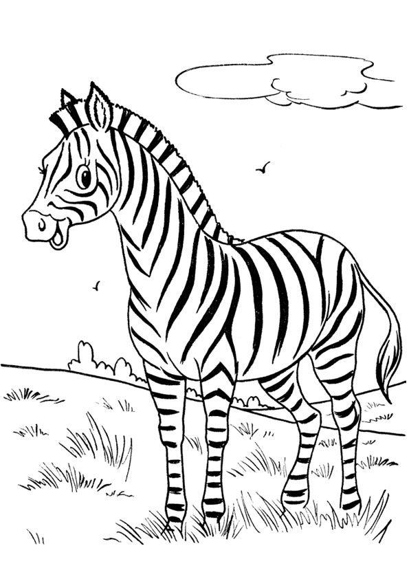 Zebra In Forest Coloring Page In 2020 Zebra Coloring Pages Zoo Animal Coloring Pages Animal Coloring Books