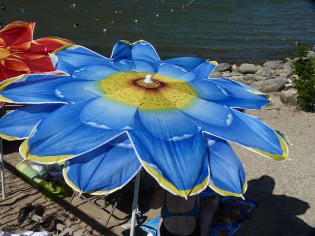 Flower Beach Umbrella The Best Beaches In World