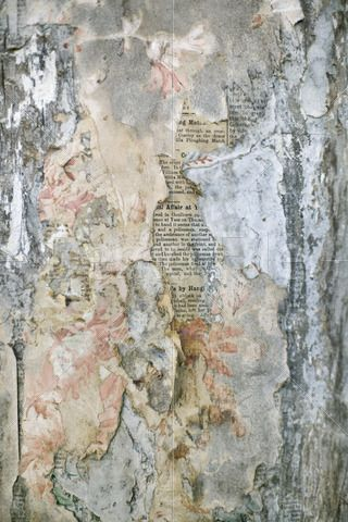 Layers of old wallpaper peeling away to reveal old newspaper underneath.