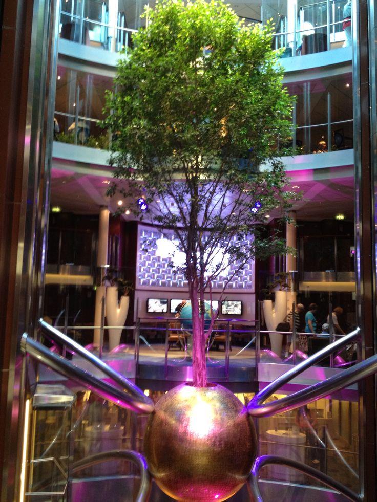 #Celebrity Cruise Line Eclipse