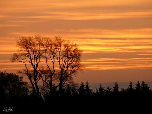 Sunset in Ohoka
