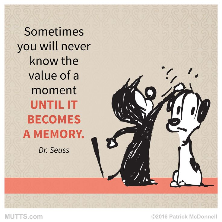 Sometimes you will never know the value of a moment until it becomes a memory #DrSeuss