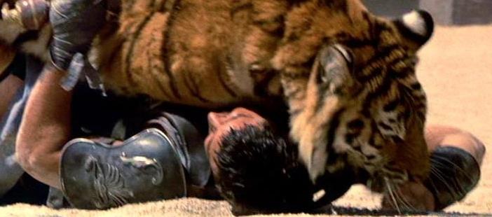 Tiger Tiger | Gladiator | Pinterest | Tiger und The Beast