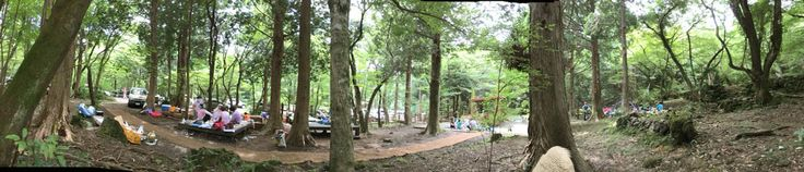Seogwipo recreational forest 3