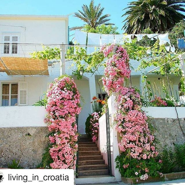#Repost @living_in_croatia (@get_repost)  Repost @huckfinncroatia with @instatoolsapp  Experience quite modest and simple way of living in Croatia. Stay in local family houses on a small island picturesque village or next to the wild river.  #adventuretravel #adventure #travel #traveling #travelblog #travelgram #sailing #local #authentic #traditional #instatravel #passportready #wanderlust  #croatia #croatiafulloflife #islandlife #activevacation #summer #naturelovers #dubrovnik #adriatic…