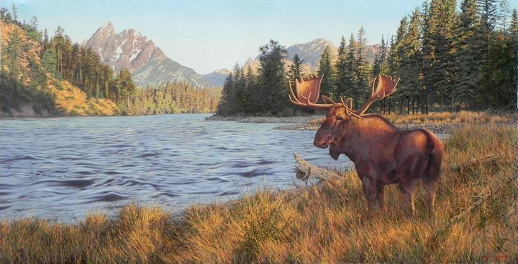 Call of the wild Oil on canvas  by Robert Koch