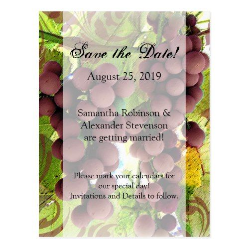 Winery Wedding Save the Date Elegant Vineyard Purple/Green Grapes Save the Date Postcard