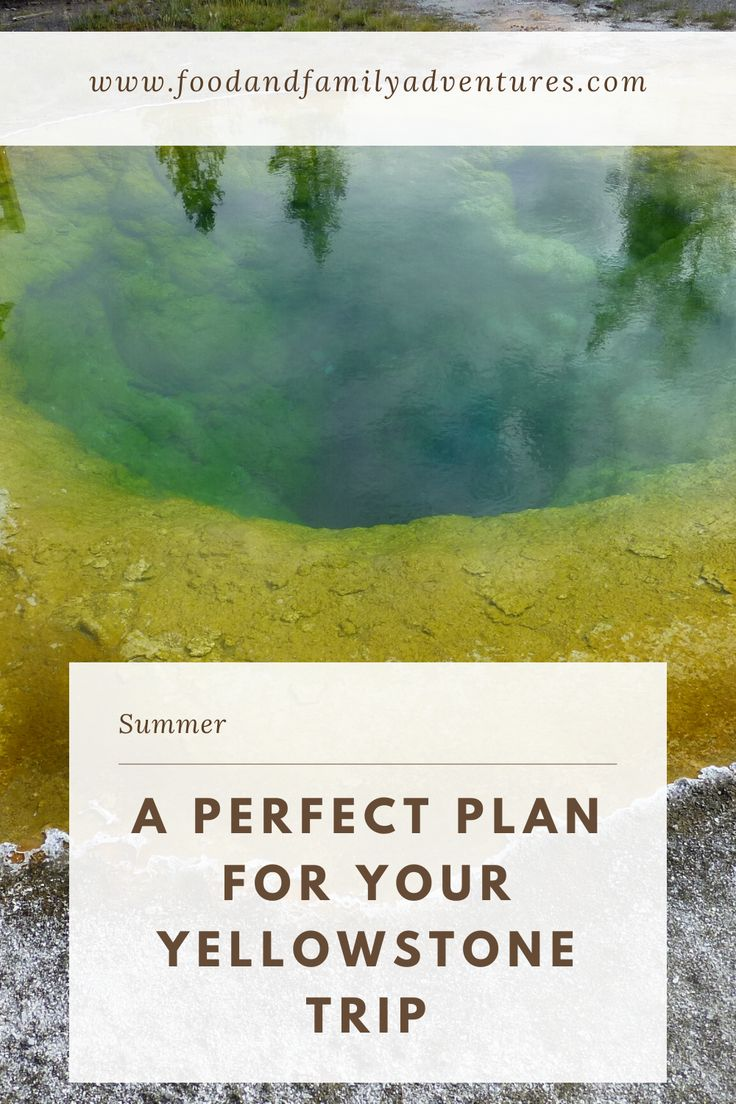 A perfect plan for your Yellowstone trip in 2020