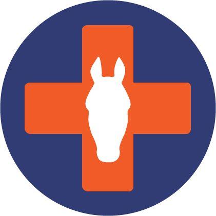 Hevosen ensiapu - ilmainen verkkokurssi! Hevoskoulutus.fi
