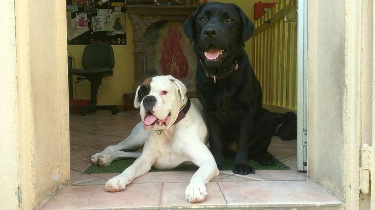 Best friends 🐶😊