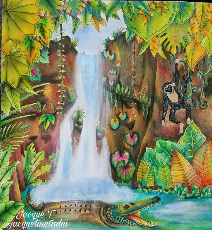 Pin By Bandit On Magical Jungle Waterfall Pg 1 2