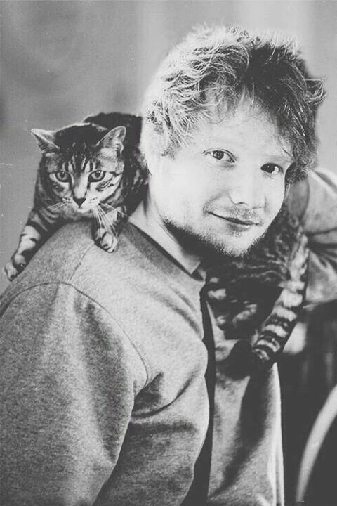 Dead Ed Sheeran, eternal love and thanks for always being the face and sound of instant joy. <3 it's my dream to meet you!