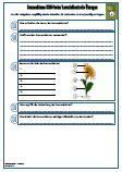 #HSU #Sonnenblume Unterrichtsmaterial für den #Sachkundeunterricht.  Verschiedene Fragen zu dem Thema: Sonnenblume •Herkunft •Größe • #Sonnenblumenkerne •Aussehen •Blütenblätter • #Wachstum •Blütenzeit •Samen • #Ernte •Verwendung •34 Fragen •2 x Lernzielkontrollen / Schulproben / Tests •Ausführliche Lösungen •13 Seiten  Das aktuelle Übungsmaterial enthält genau die Anforderungen, die in der Schule in der Schulprobe / #Lernzielkontrolle / Klassenarbeit abgefragt werden.