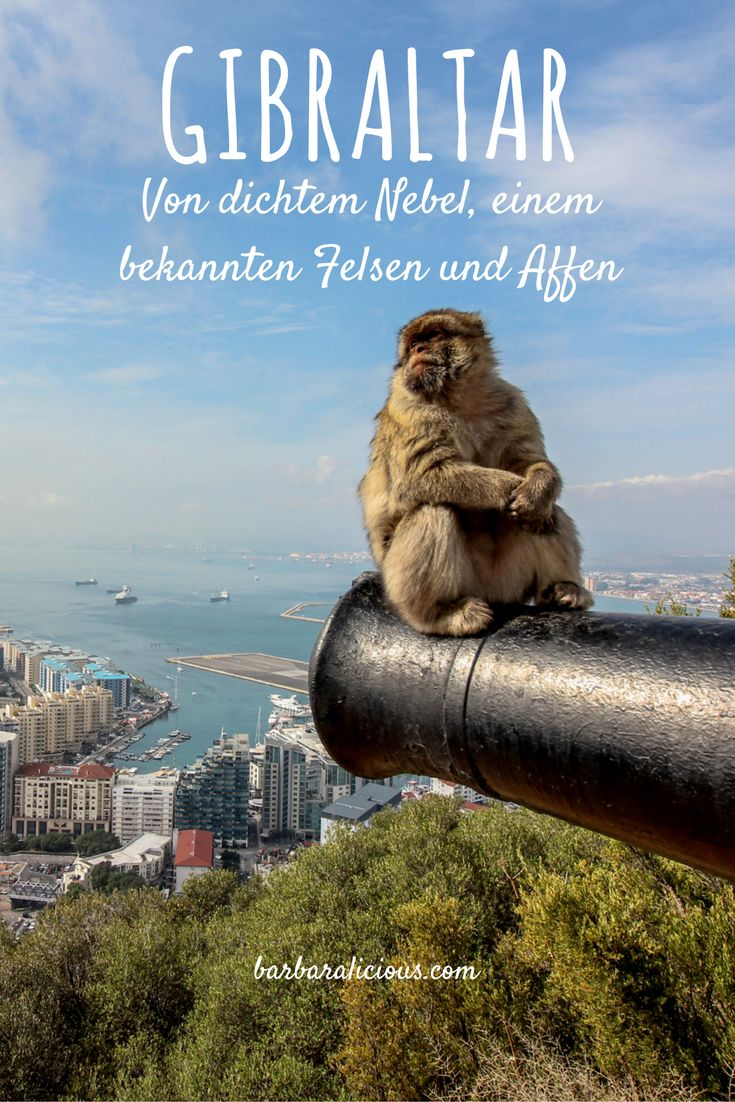 It feels strange to pass the border from Spain to Gibraltar! Why? Read about my day trip from Tarifa to Gibraltar in my latest blog post!