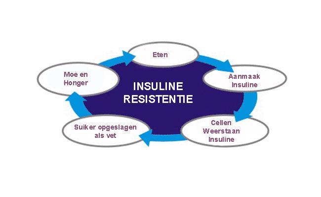 Insulineresistentie veroorzaakt PCOS, Acne, maakt dik en oud 2
