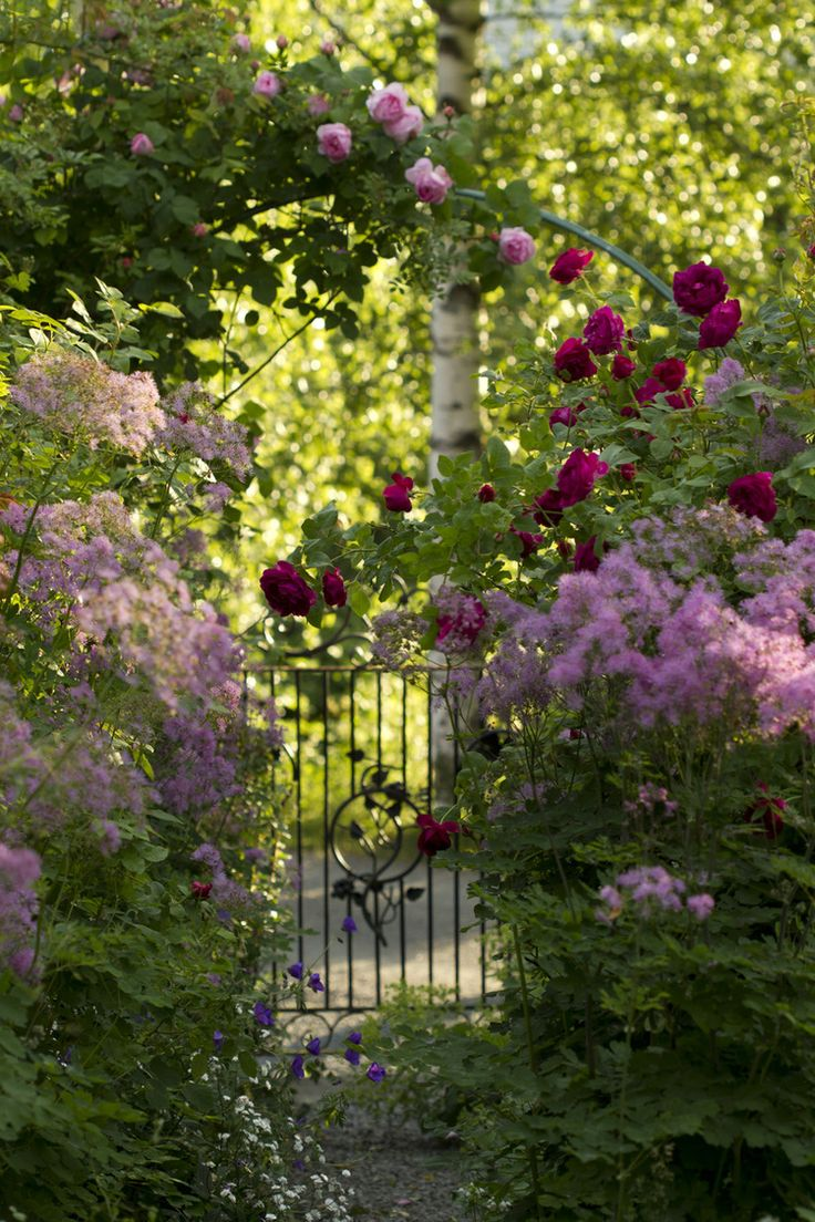 7945 best garden images on pinterest | gardens, beautiful gardens