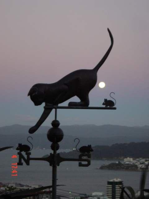 Cat weathervane, playing with mice, customer photo