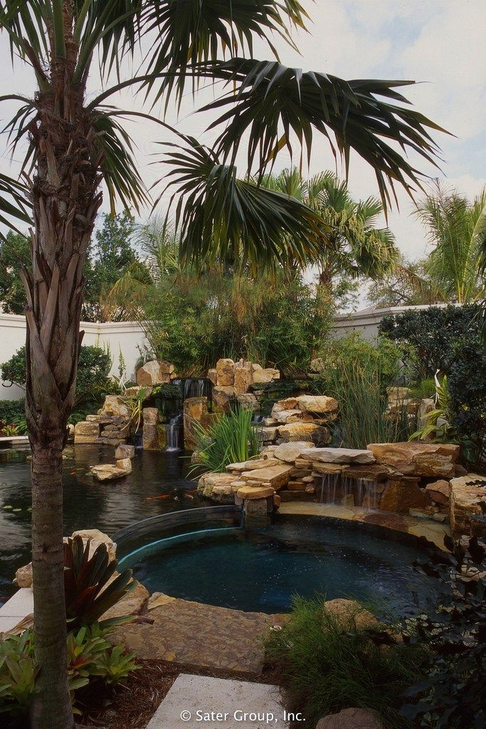 Dan sater koi pond pool backyard pinterest for Koi pond next to pool