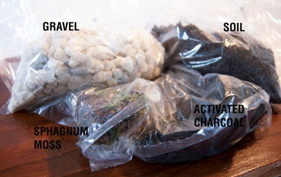 The Terrarium Kit - Terrarium Kit / Soil Mix / Activated Charcoal / Gravel / Sphagnum Moss - The Kit by Geodesium £10