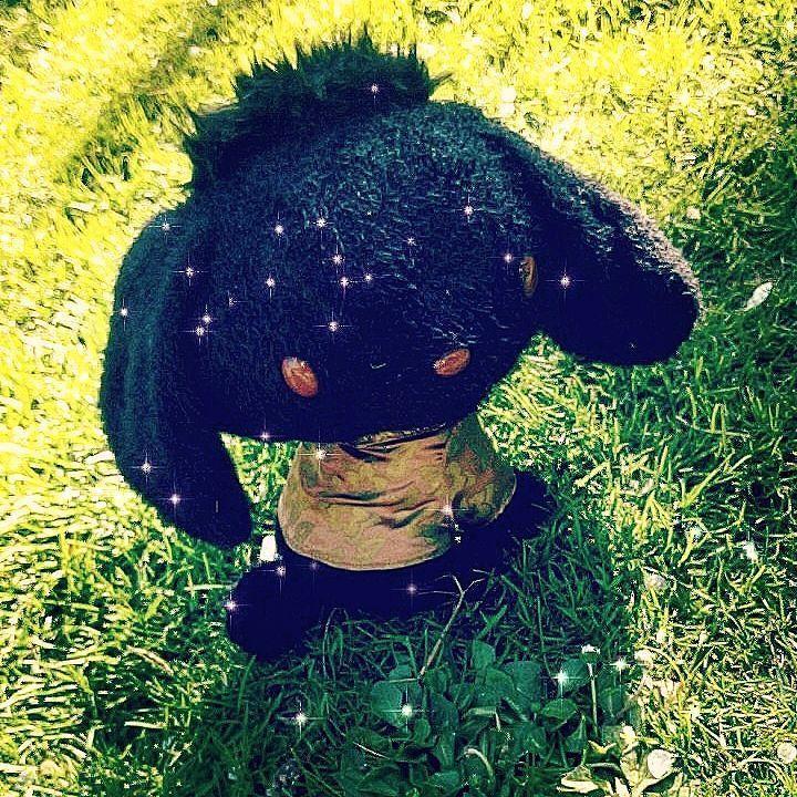 #sanrio #frenchgarden #spring #green #grass #lunch&brunch #dog #plush #black #kawaii #snapshot #iger #igeroftheday #japan #japaneseplush #japanplush #france