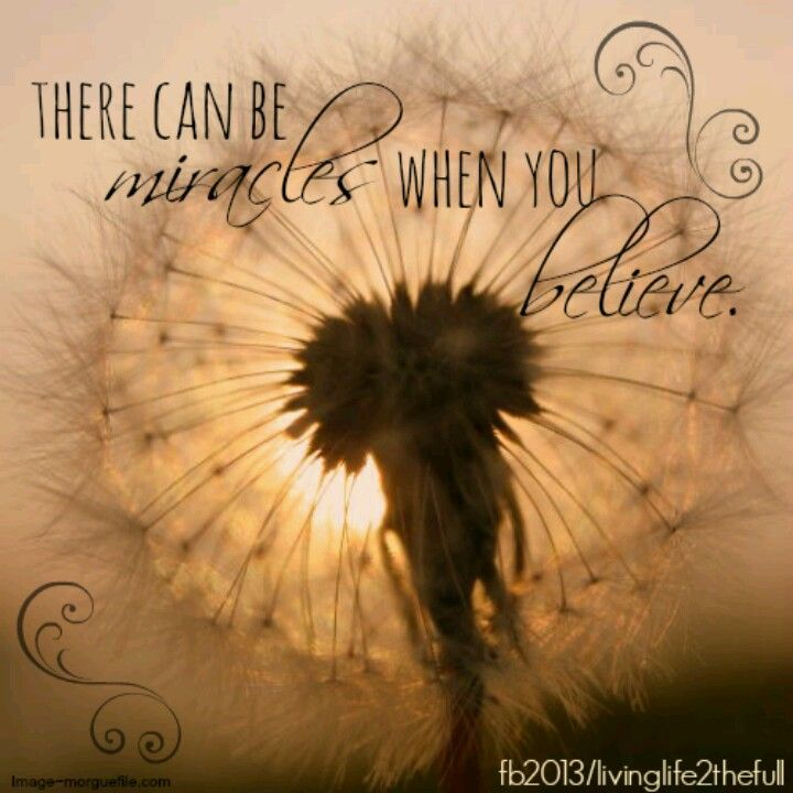 I Believe In Miracles Personal Growth Motivation When You