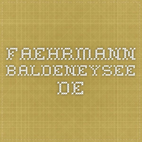 faehrmann-baldeneysee.de