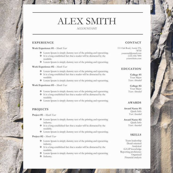 Stylish Resume Template Word Resume Template