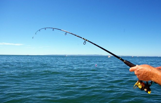 no fees, no hassles! Pre-booking gets you on the water quicker and ensures you avoid disappointment on busy days. Get out into the Port Phillip Bay and get fishing. See you soon!