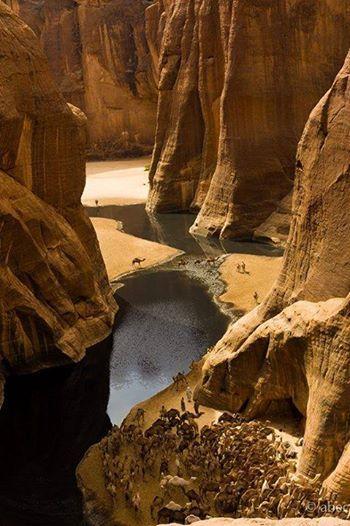 Guelta d'Archei Oasis, Sahara Desert, Tchad
