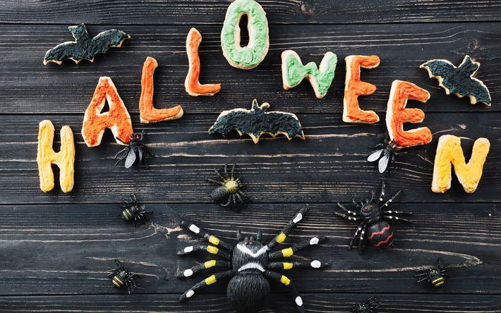 Download imagens Dia das bruxas, Outubro, abóbora, aranhas, Halloween decorações do feriado