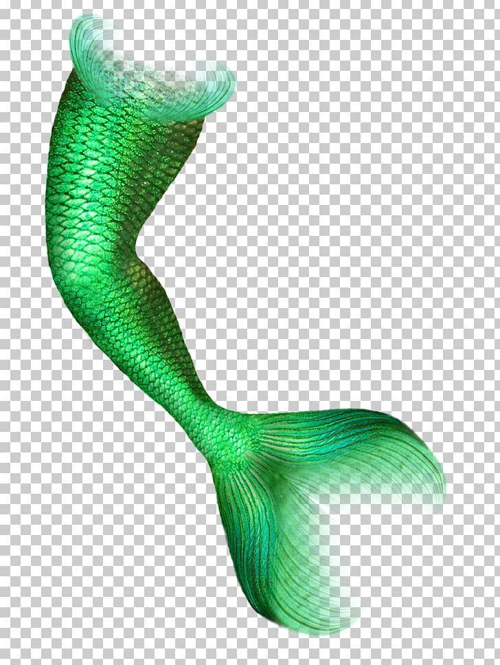 Mermaid Tail Png Ariel Mermaid Blue Cartoon Mermaid Color Computer Icons Computer Icon Mermaid Tail Mermaid