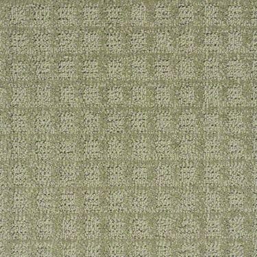 11 best carpet images on pinterest shaw carpet hgtv and for Best berber carpet brands