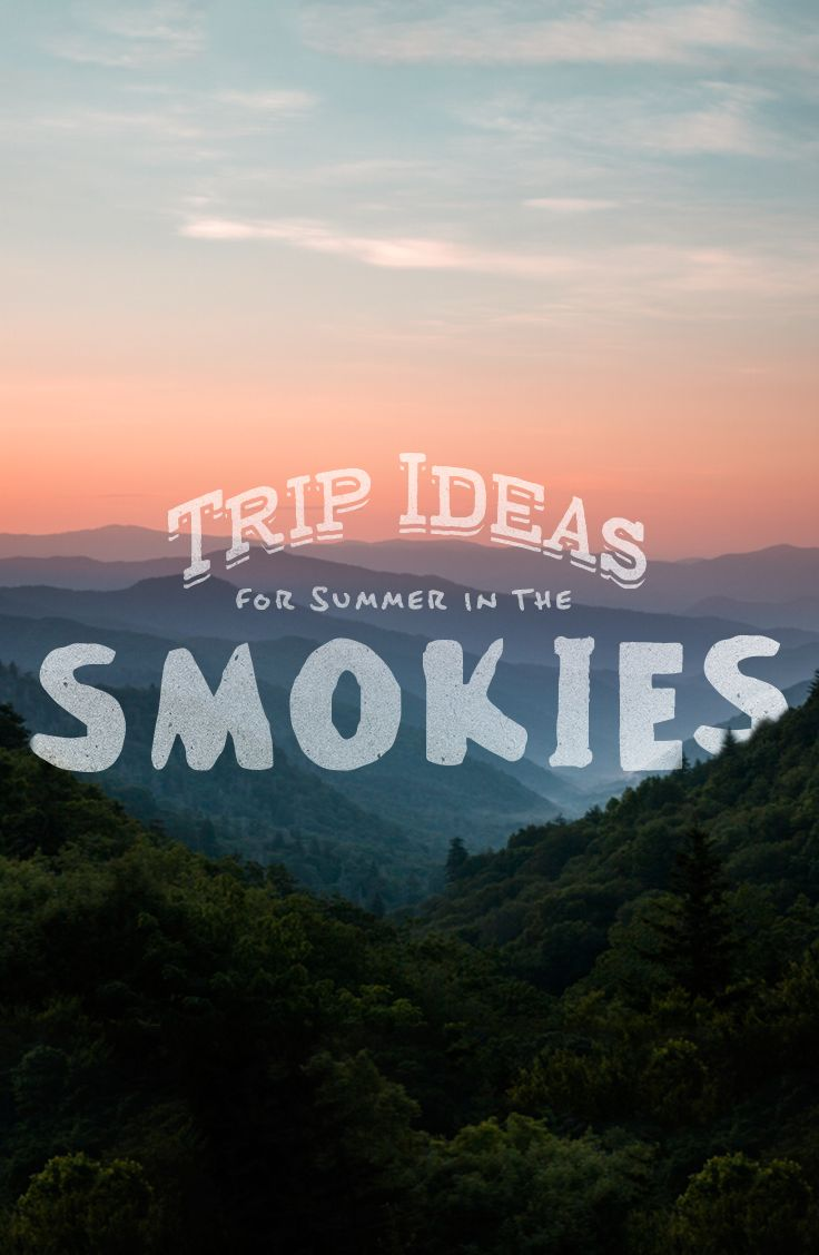 Summer trip ideas for two days of family adventure in East Tennessee and the Smokies. Stops include Dixie Stampede, Cades Cove, Ripley's Aquarium, Buckberry Creek, and more!